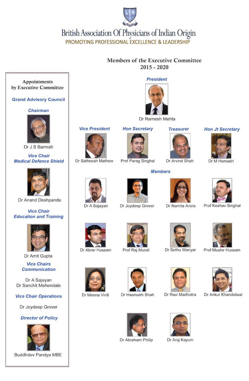 BAPIO Executive Committee